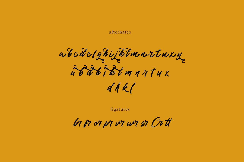 Rommantis Script example image 9