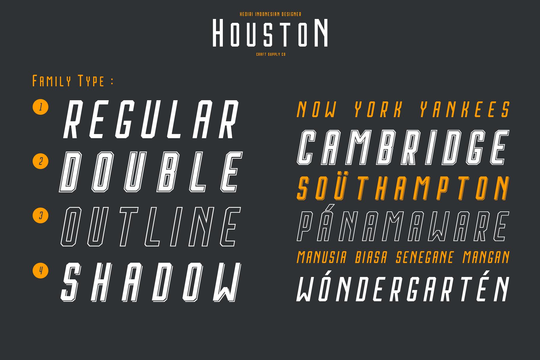 Houston Italic Font Family example image 4