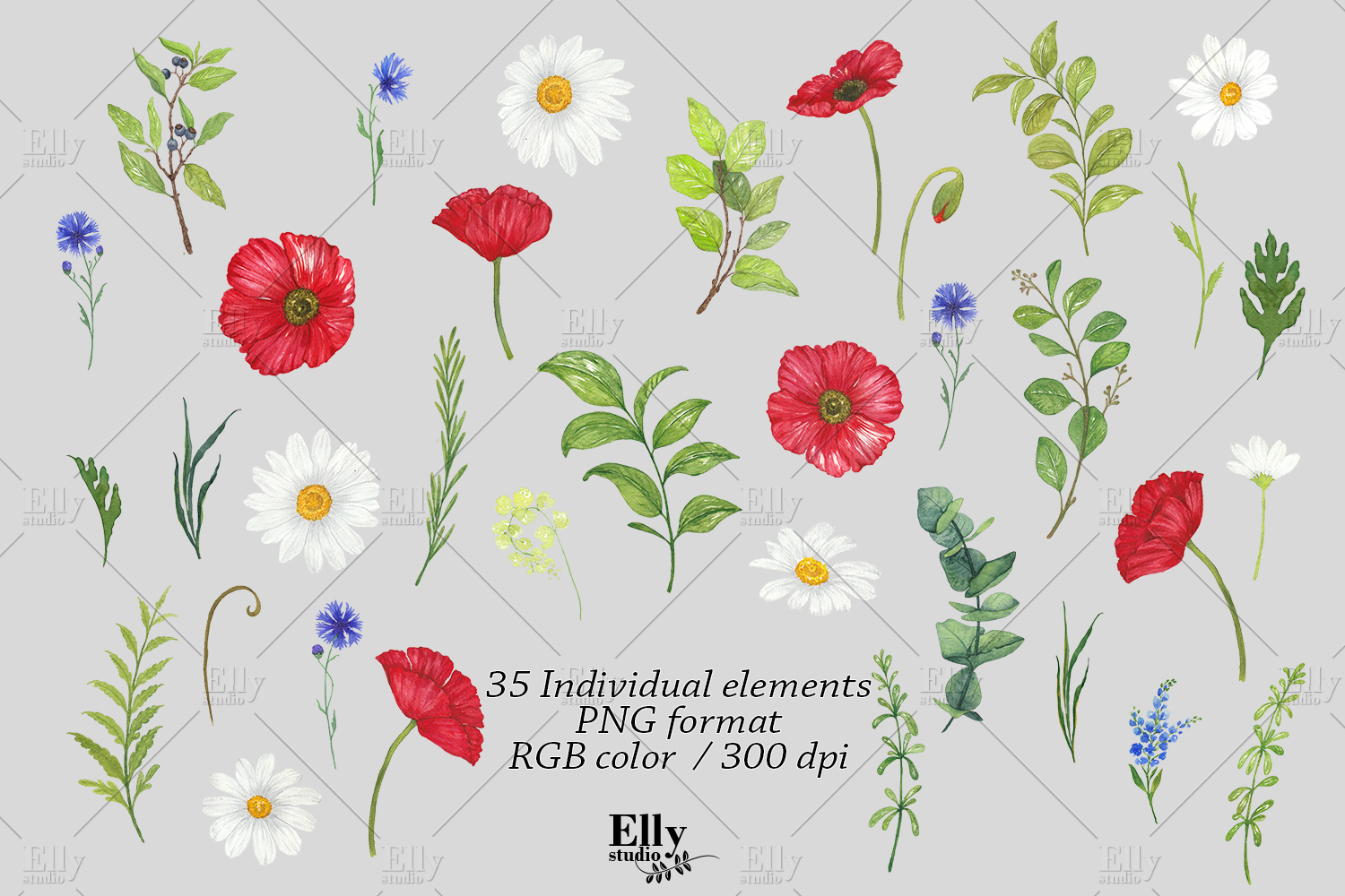Watercolor Poppies Clipart Summer Flowers example image 6