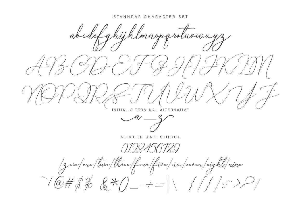 Creative Signature Font example image 9