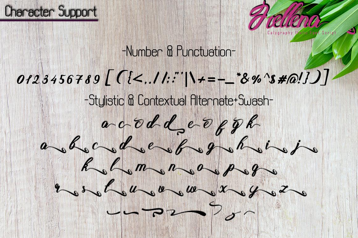 Hellena Italic-Calligraphy Italic Font Script example image 8