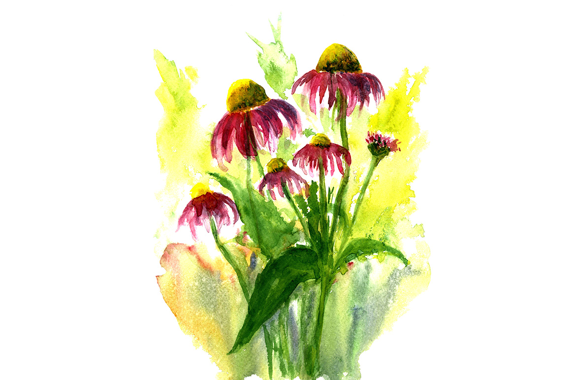 sketch drawing summer flowers example image 1