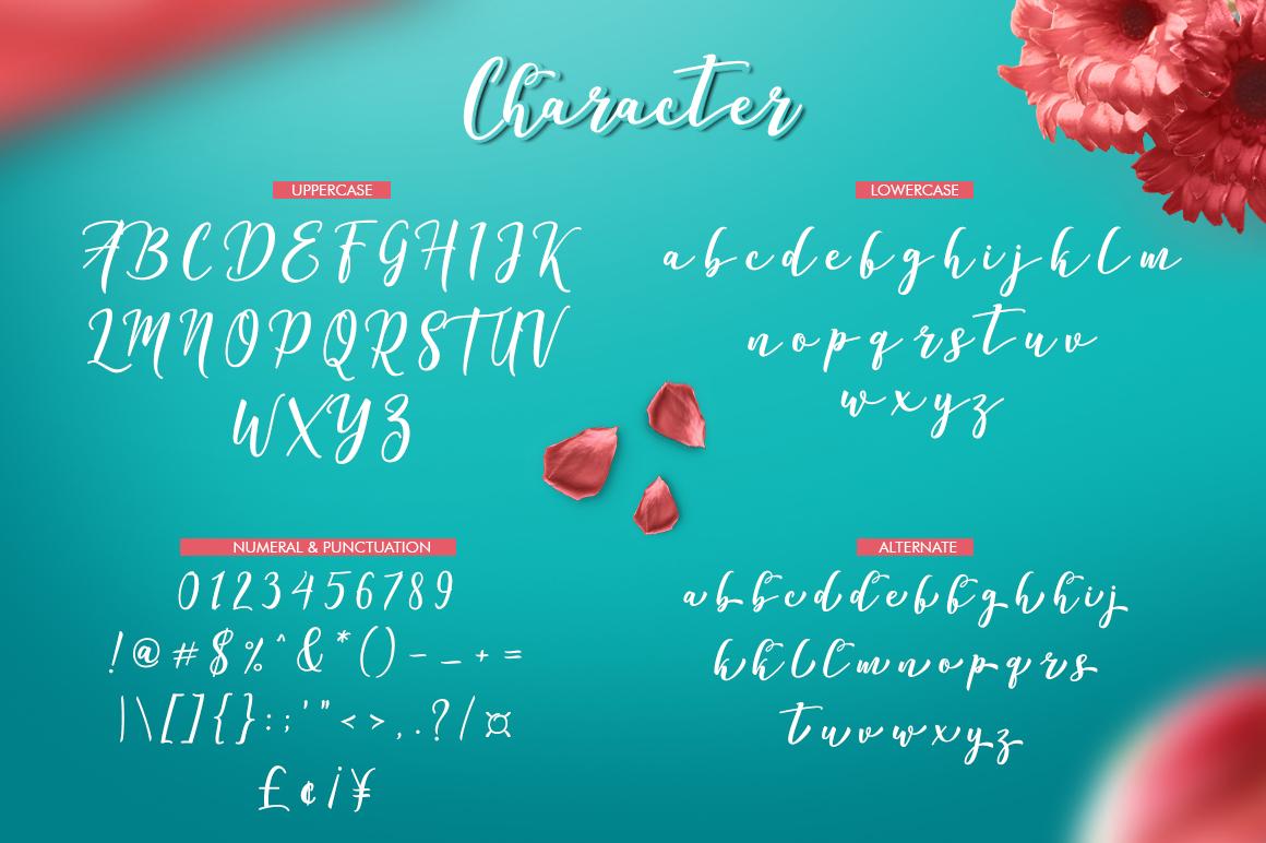 Declara Script example image 9