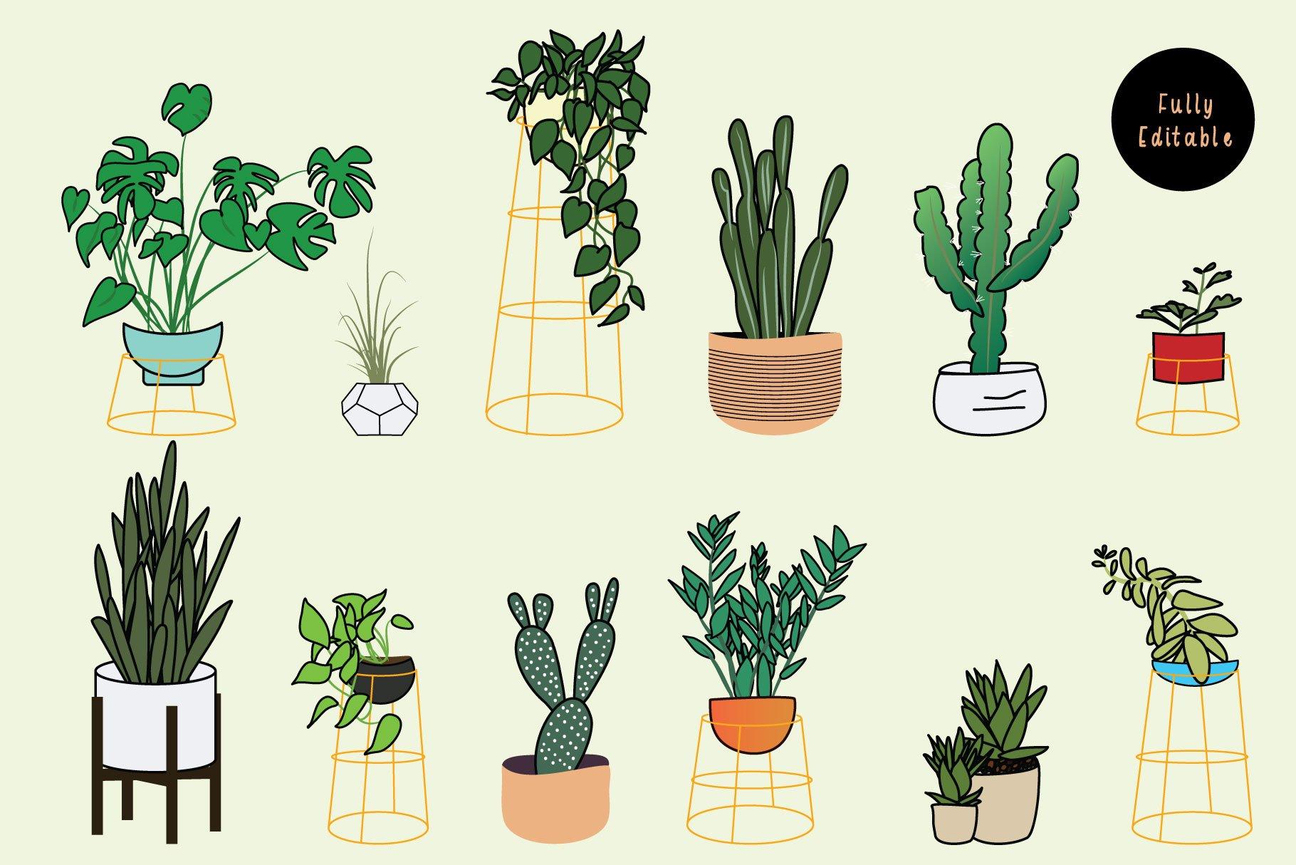 Houseplants Bundle example image 2