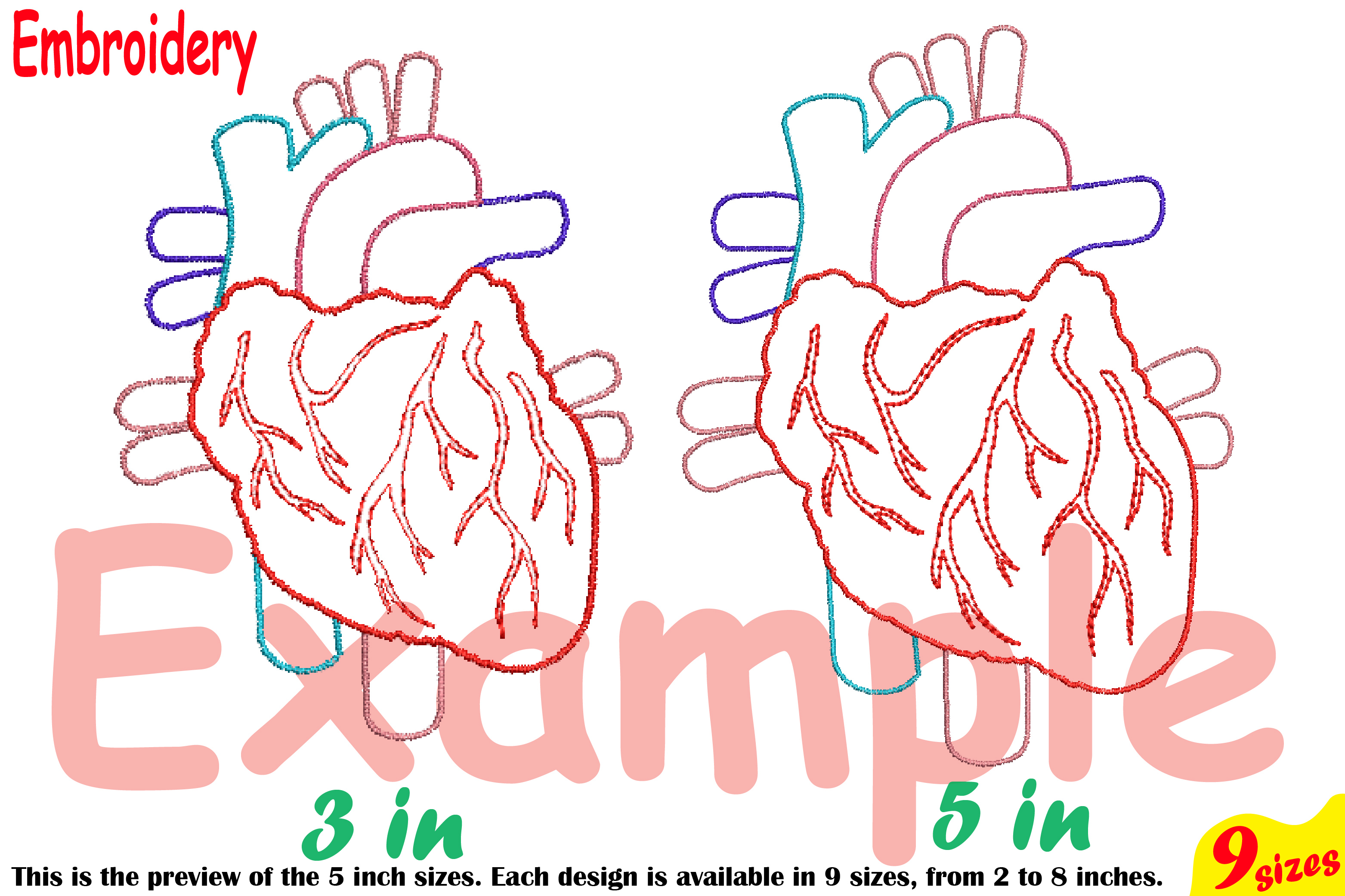 Heart Outline Embroidery Design Machine Instant Download digital file science school hospital biology Medic Organs Anatomy 202b example image 4