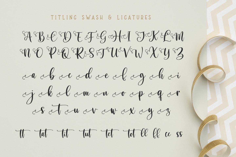 Sibertha - Font Duo - example image 12