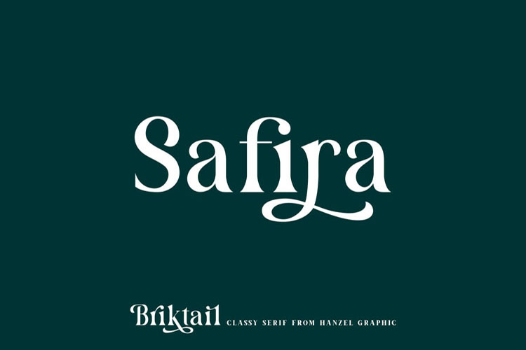 Briktail//Modern Serif Font example image 4