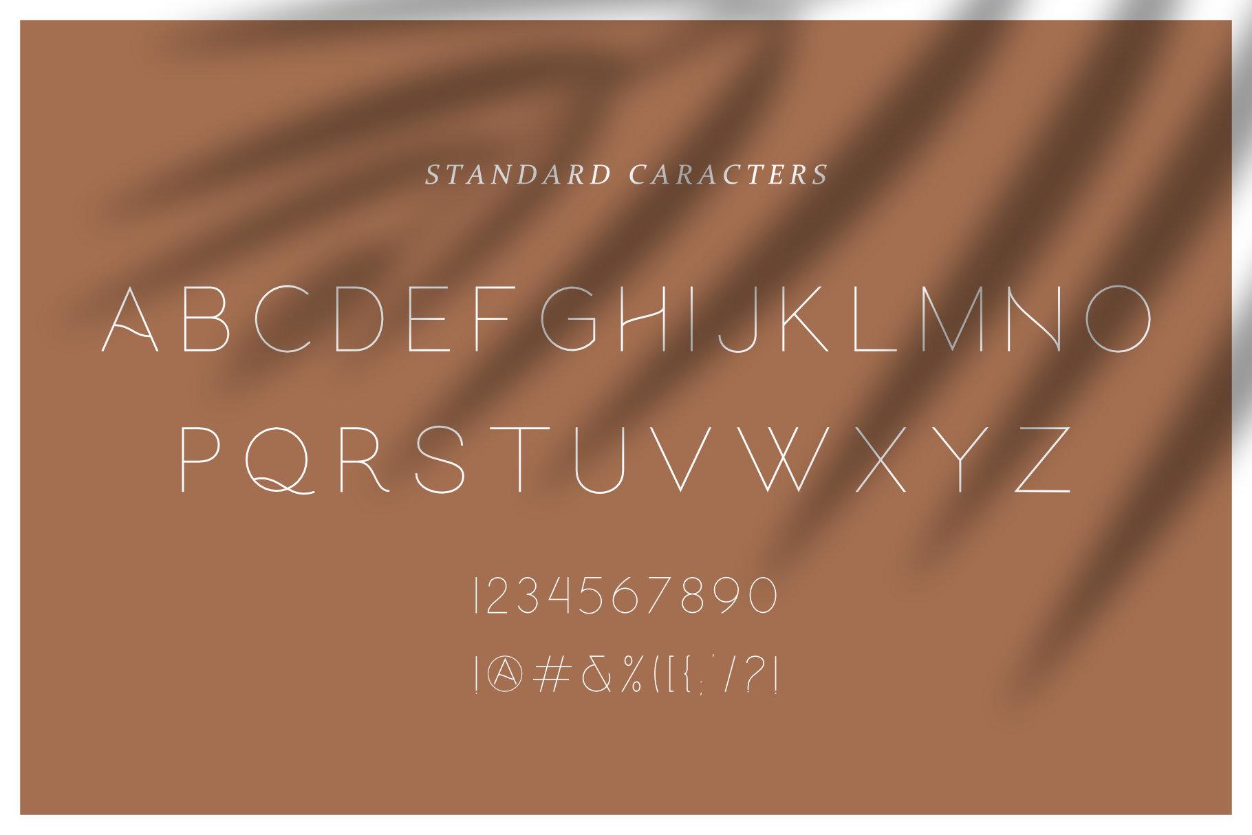 Hello Galleria Font Duo example image 6