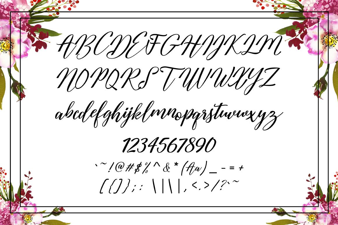 Austina Script example image 9
