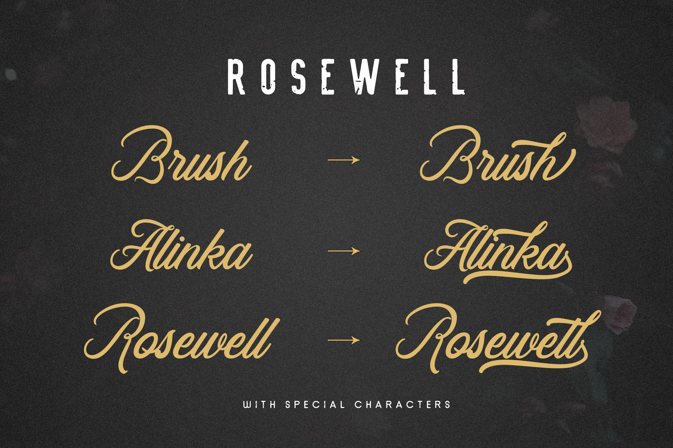 Rosewell Font Collection example image 6