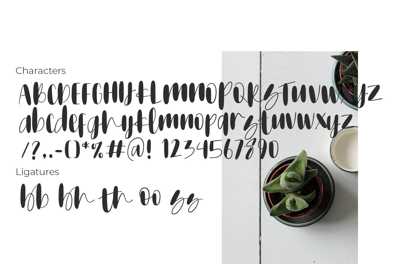 Mothamoph - Font Script example image 3
