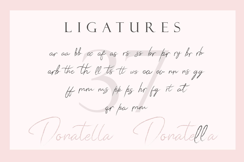 Donatella - Handwritten Font example image 11