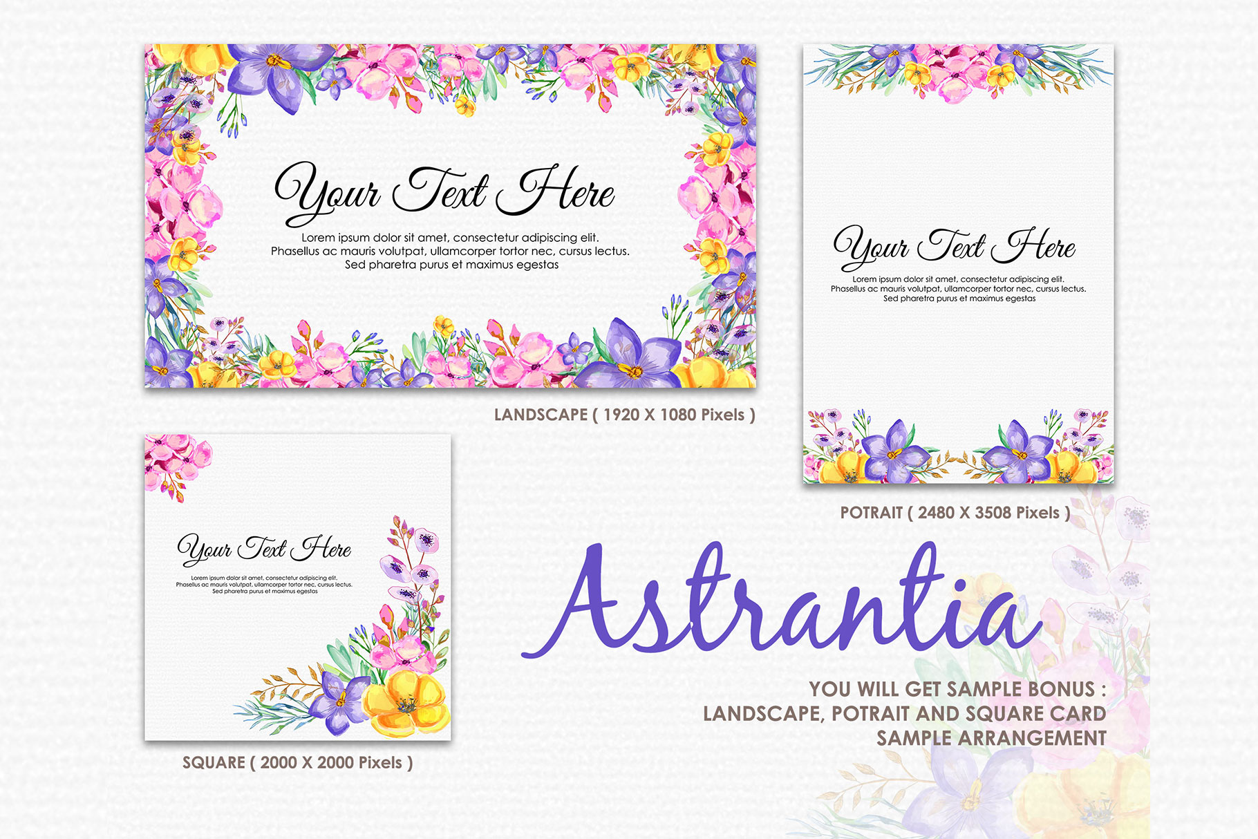 Astrantia - Digital Watercolor Floral Flower Style Clipart example image 4