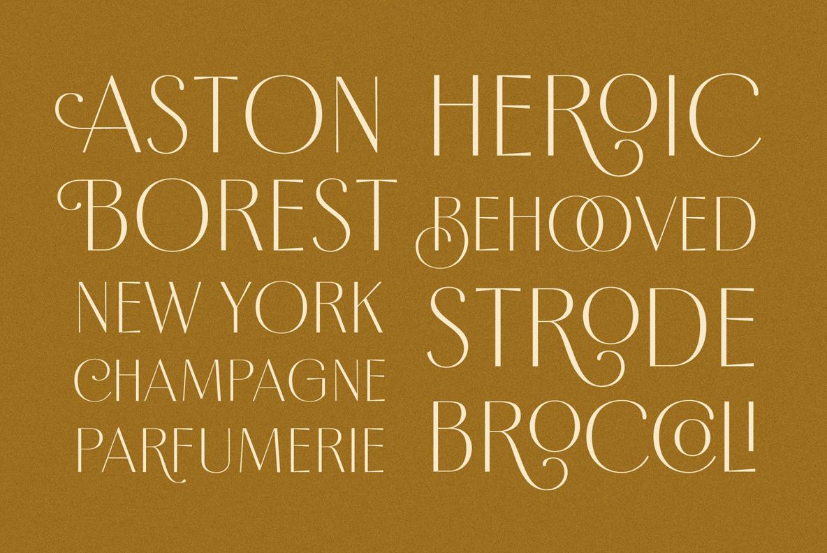 Borest - Elegant Roman Sans Serif example image 20