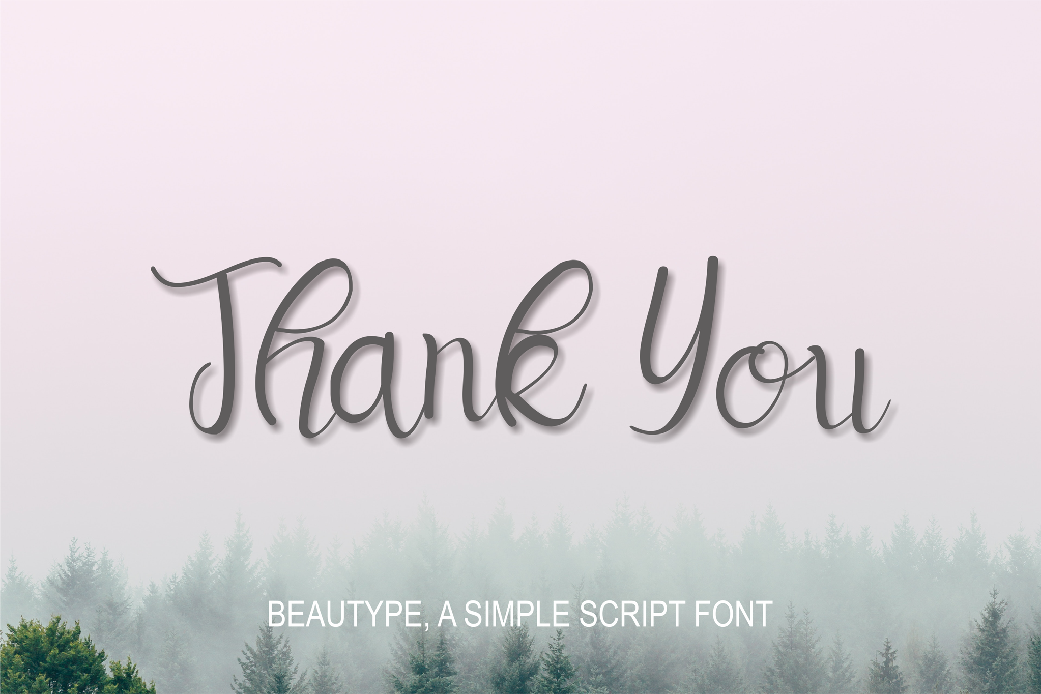 Beautype - Simple Script Font example image 11