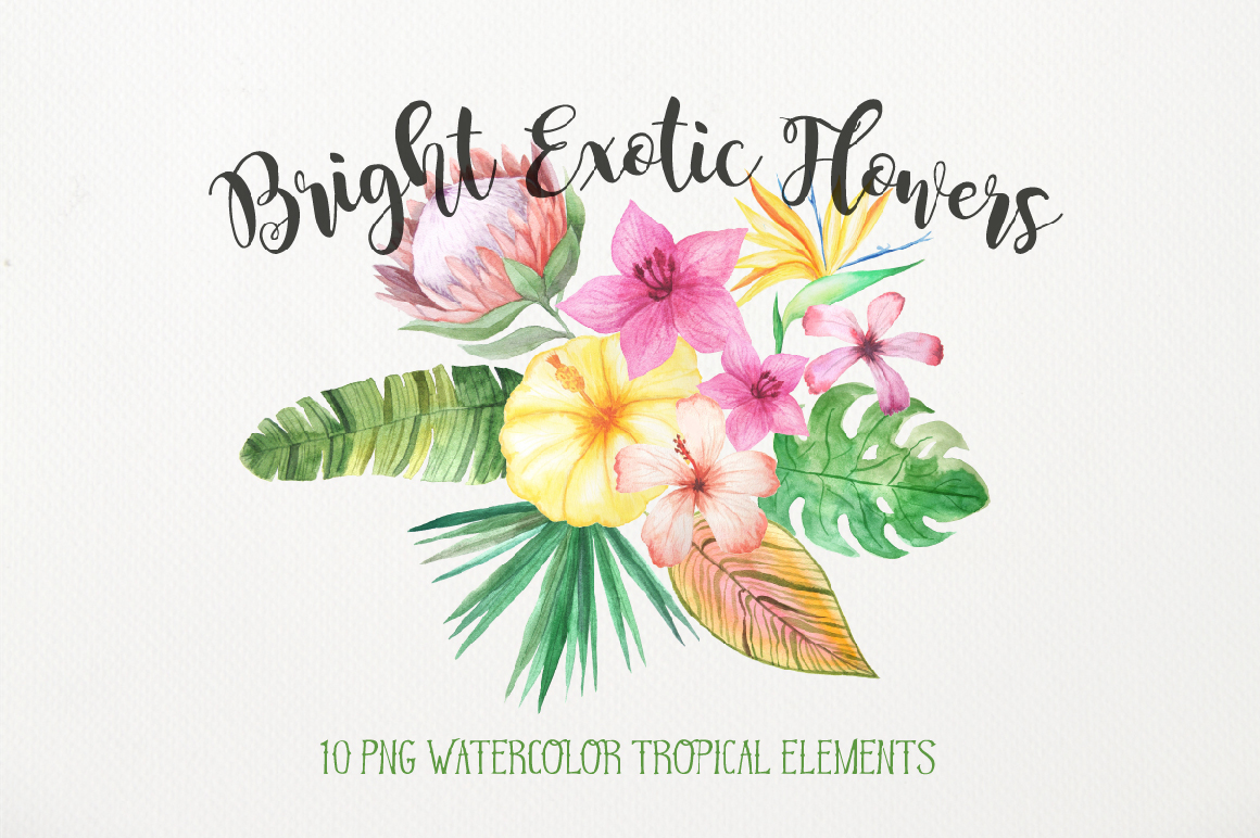 Watercolor Exotic Flowers Mini Set example image 1