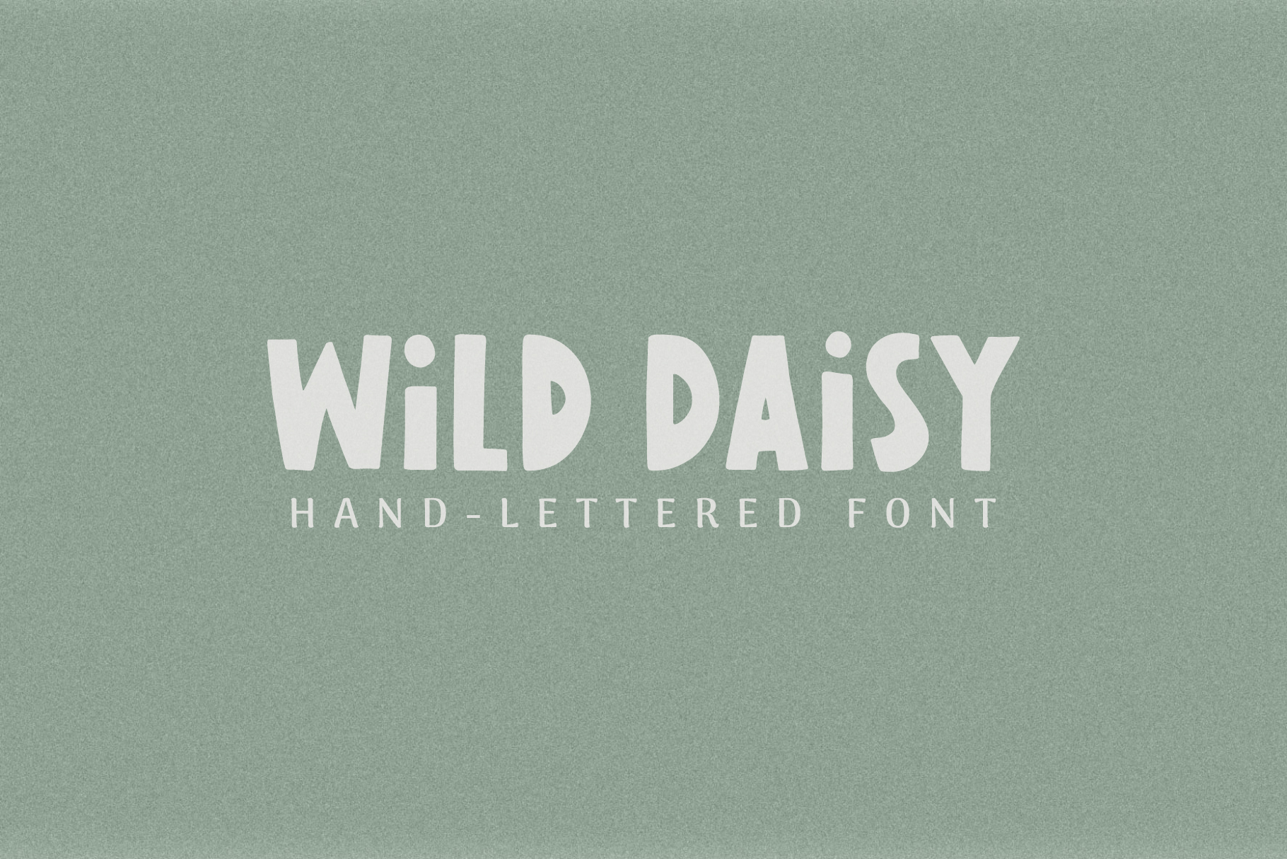 Wild Daisy | Hand-Lettered Font example image 1