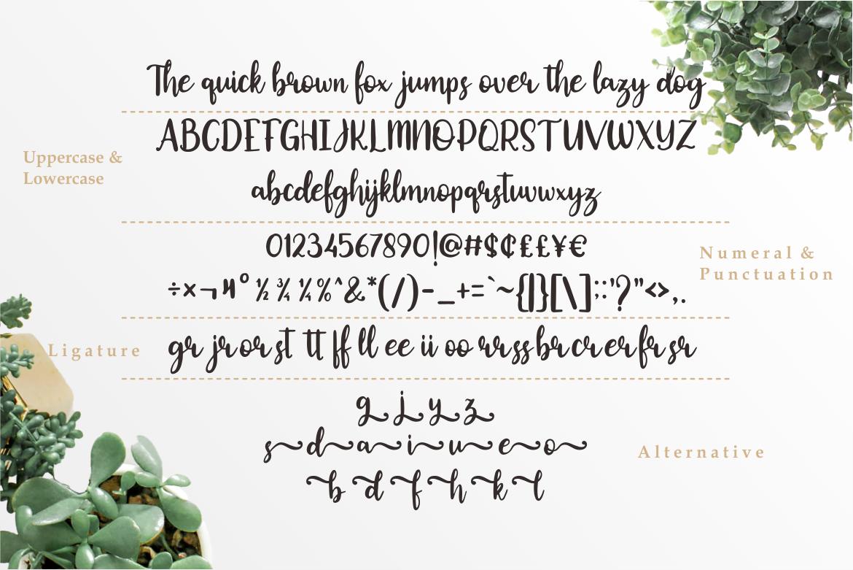Okuland // Luxury Script Font example image 4