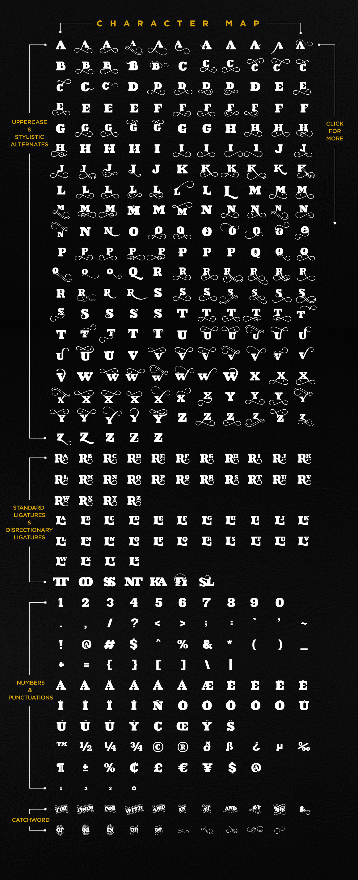VIDIZ PRO Typeface example image 4