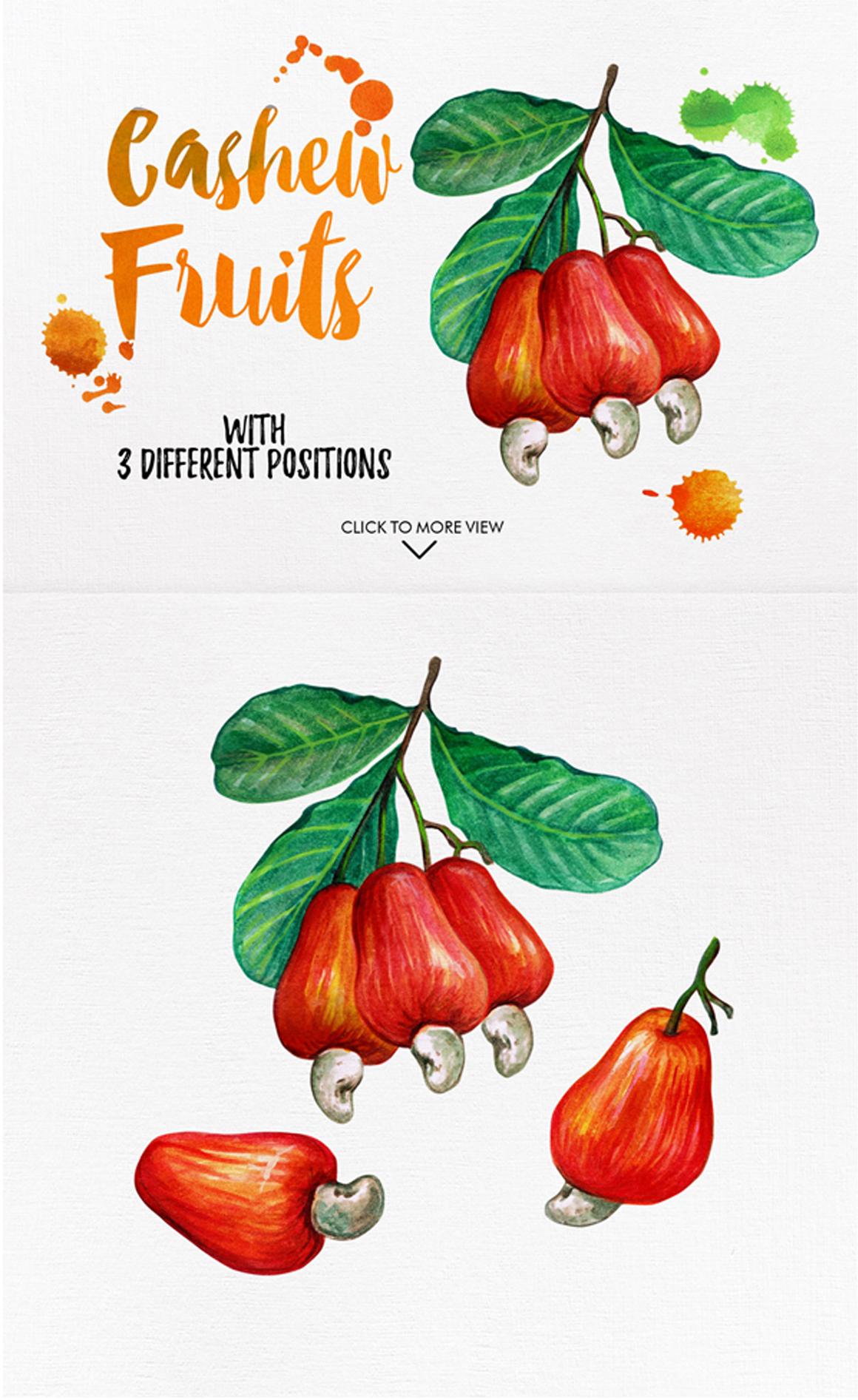 watercolor fruits vol. 6 example image 8