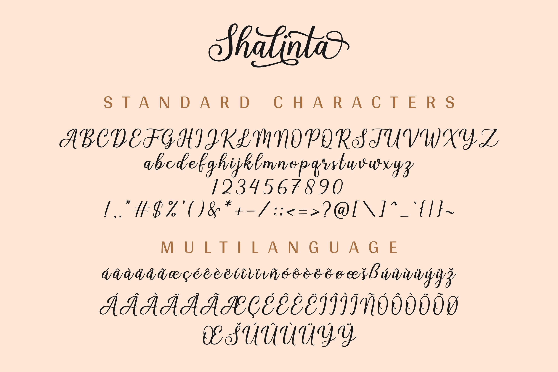 Shalinta - Luxury Calligraphy Font example image 12