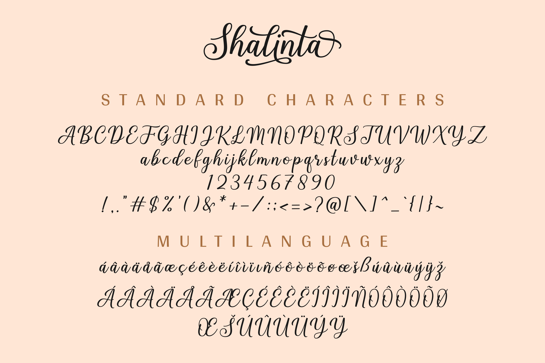 Shalinta - Calligraphy Font example image 12