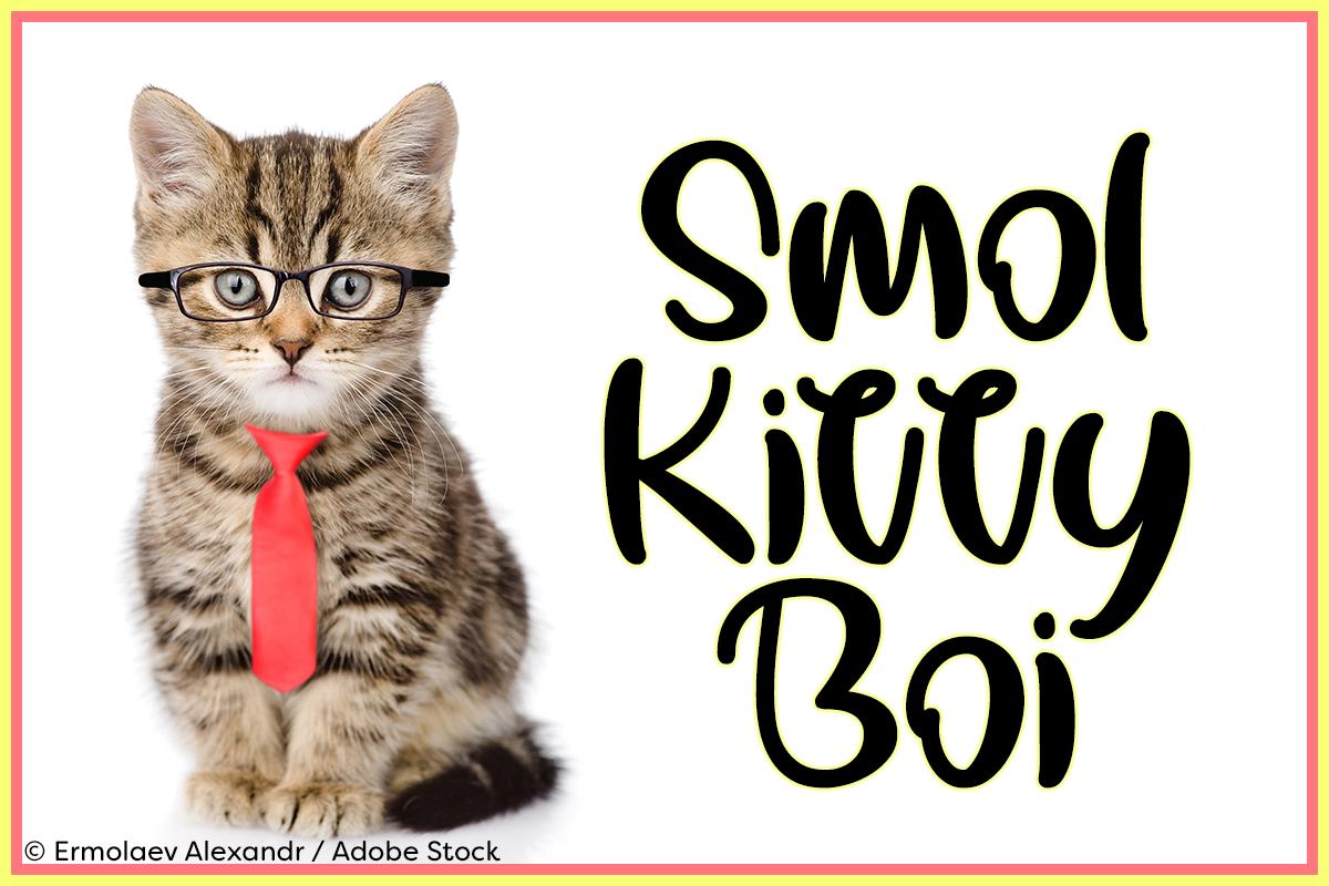 Smol Kitty Boi example image 1