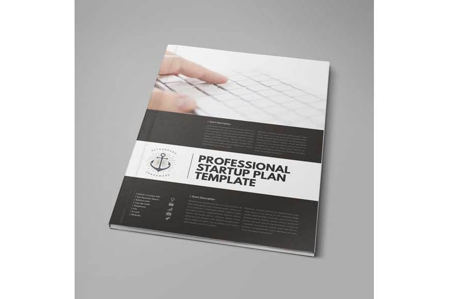 Professional Startup Plan Template example image 3