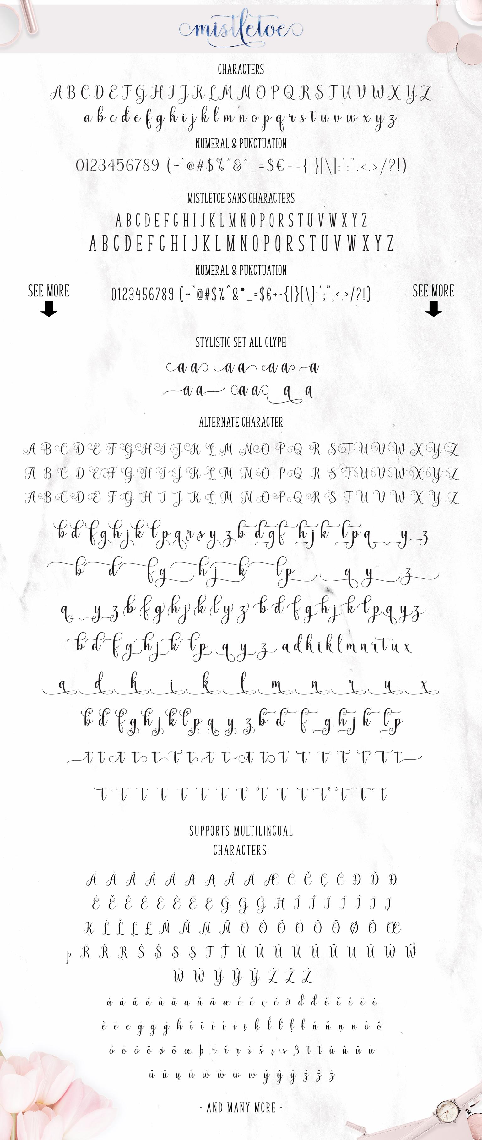 Mistletoe - Font Duo + Bonus example image 10
