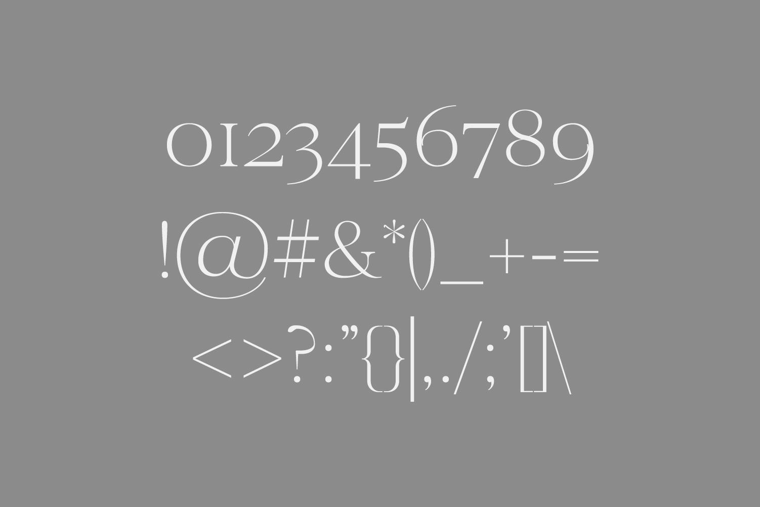 Wensley Modern Serif Font Family example image 2