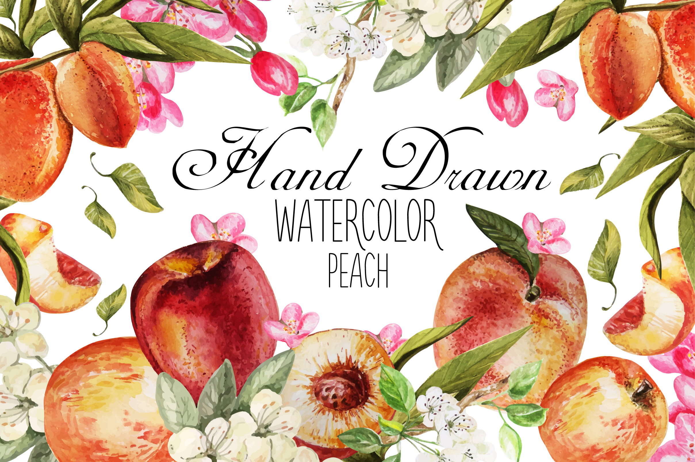Hand Drawn Watercolor PEACH example image 1
