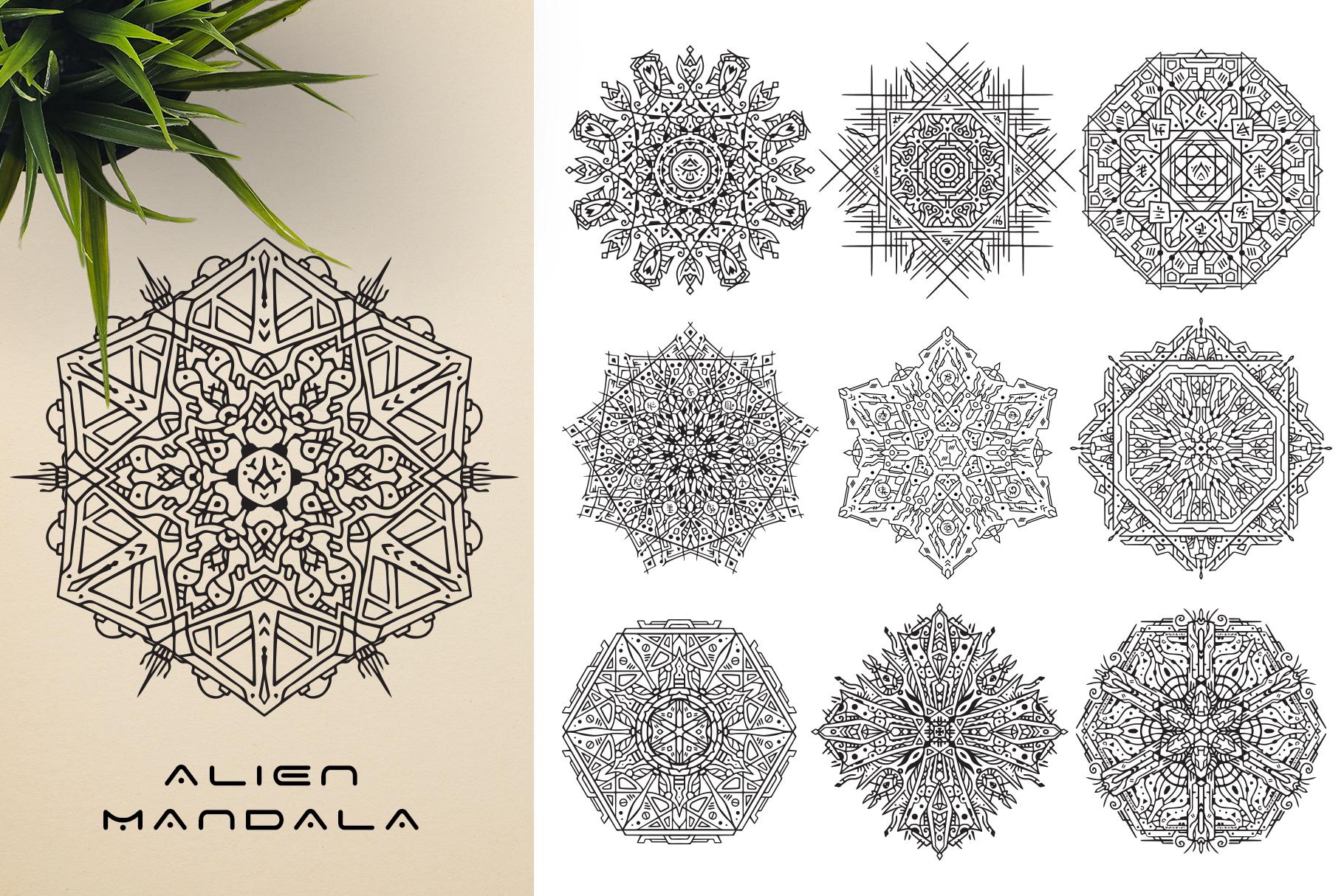 300 Vector Mandala Ornaments example image 17