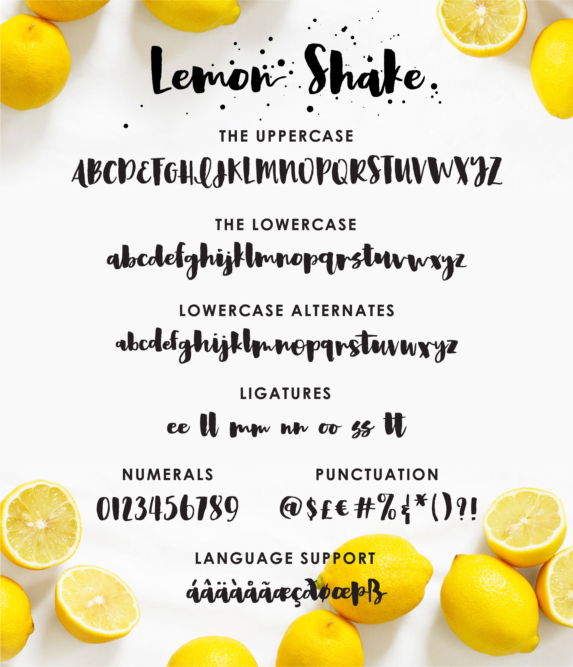 Lemon Shake, a heavy brush font example image 8