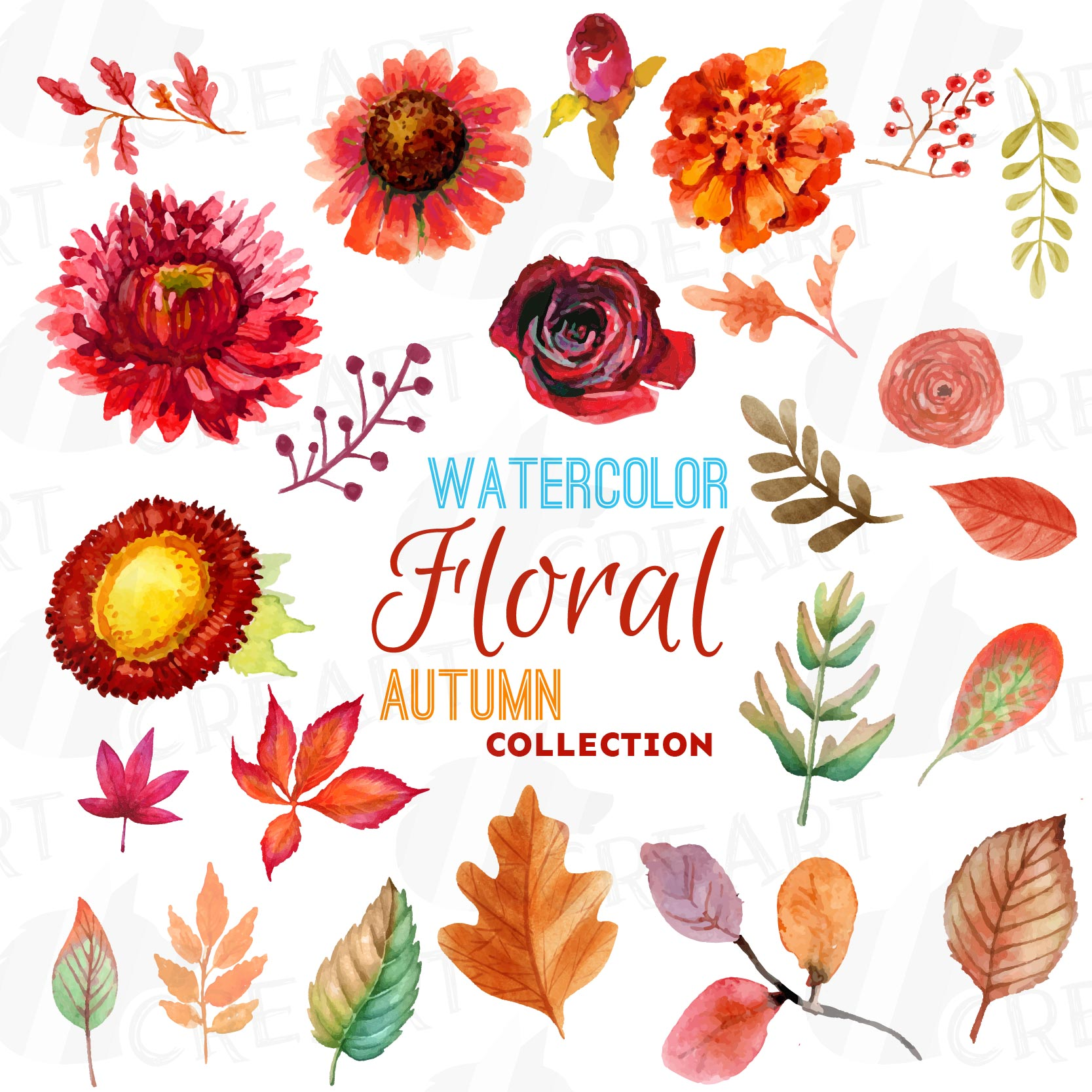 Autumn Fowers And Leafs Clip Art Pack Watercolor Floral Clipart