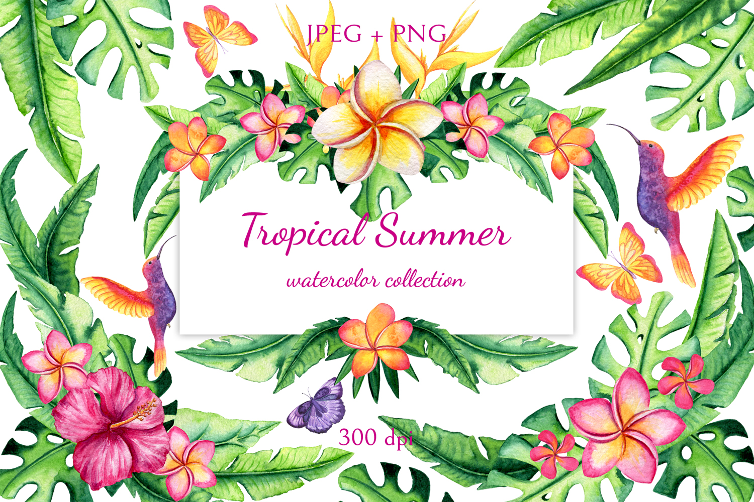 Tropical Summer example image 1