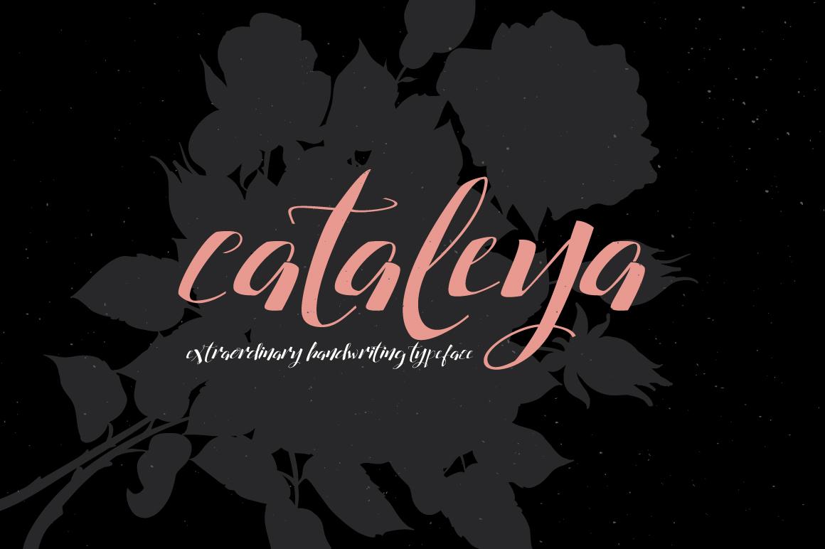 Cataleya Typeface (Full) example image 7