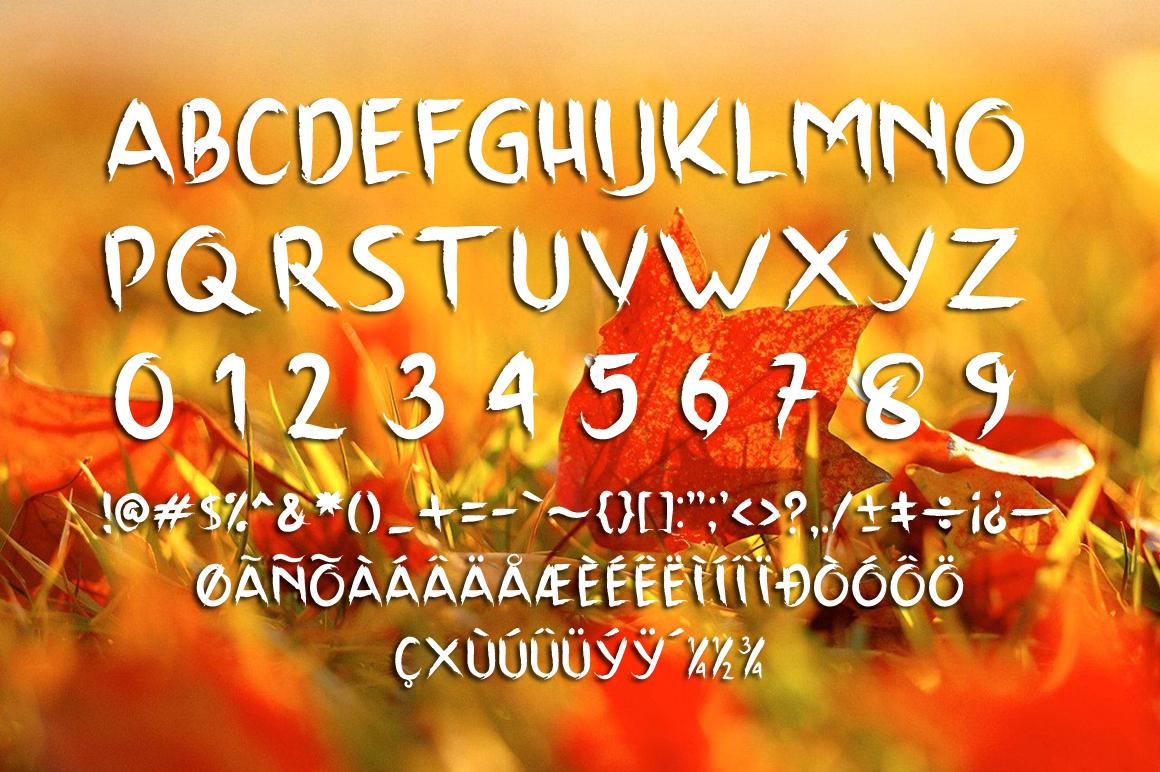 Scrap Brush Typeface example image 4