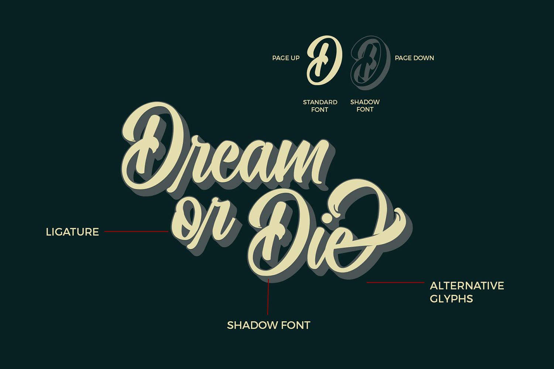 Quinshawna Font Script example image 2
