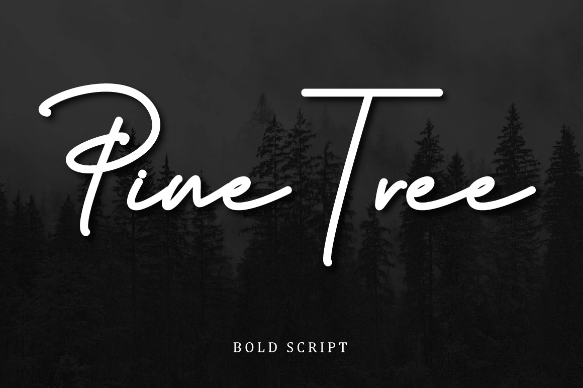 Budapest Script Font - 6 Fonts example image 6