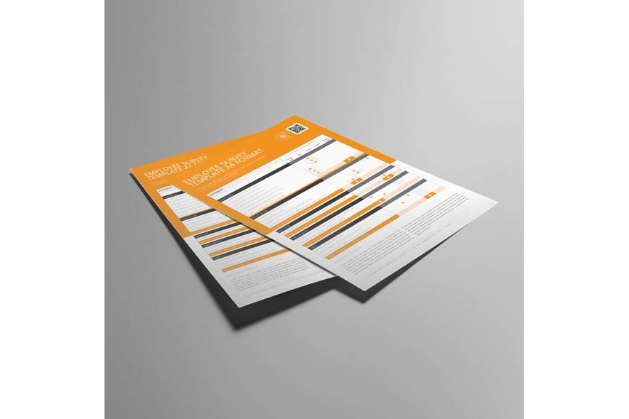 Employee Survey Template A4 Format example image 5