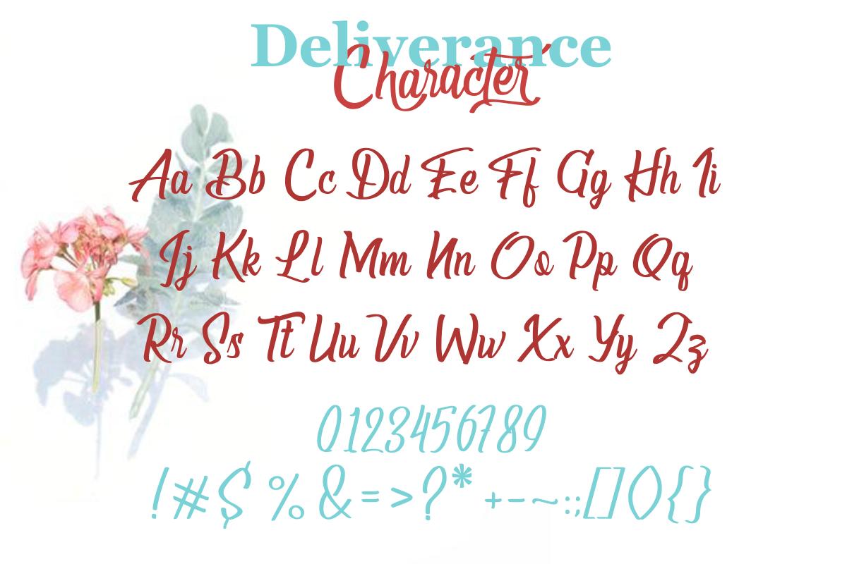 Deliverance | Modern Script Font example image 8