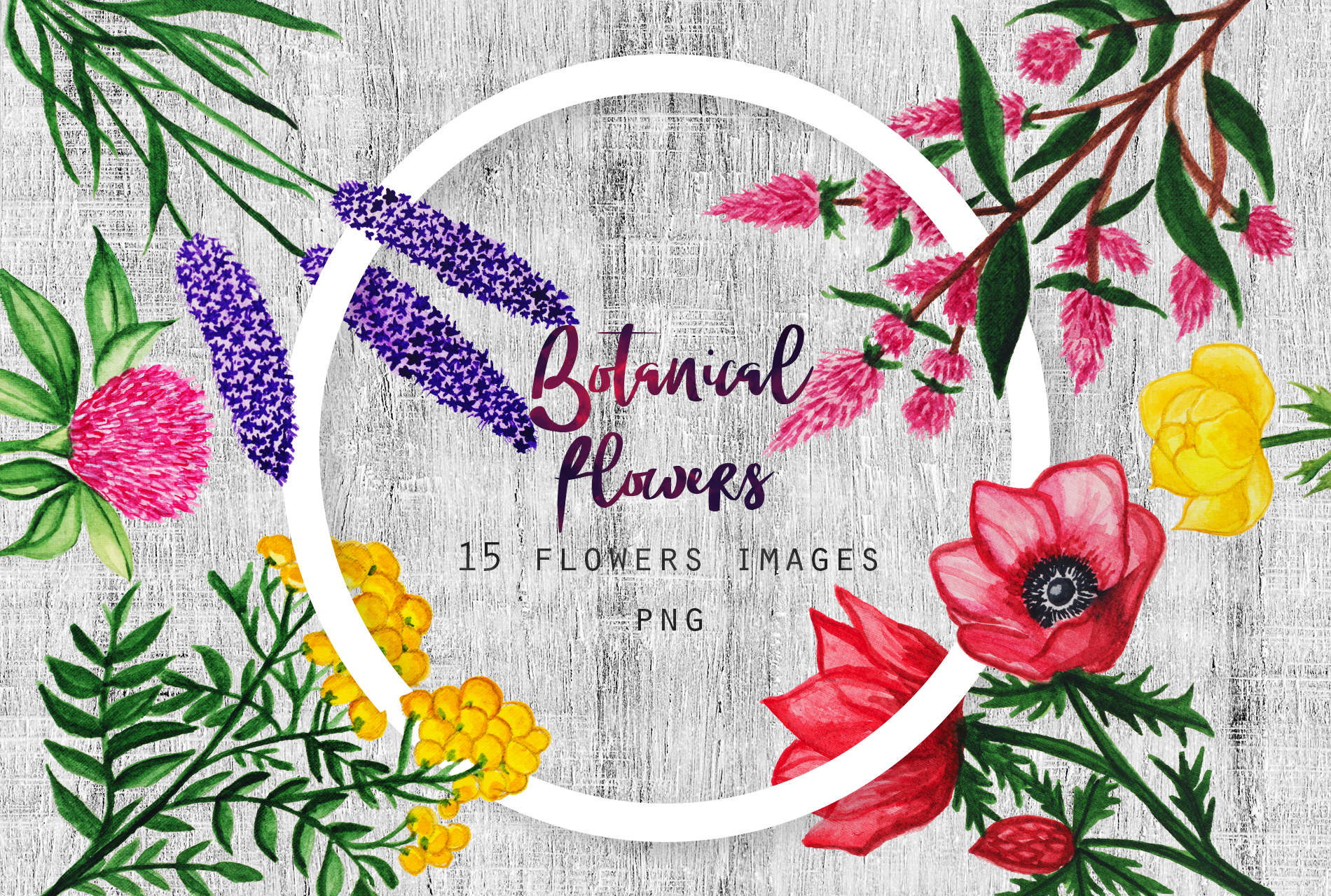 Watercolor Botanical Flowers example image 1