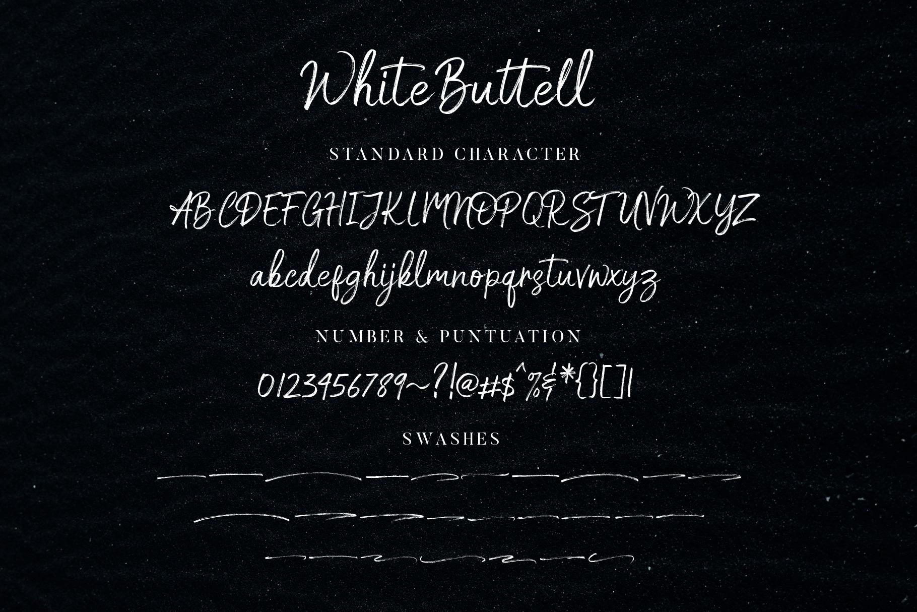 White Buttell Brush Font example image 11