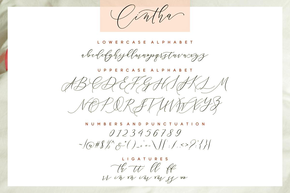 Cintha Elegant Script example image 9