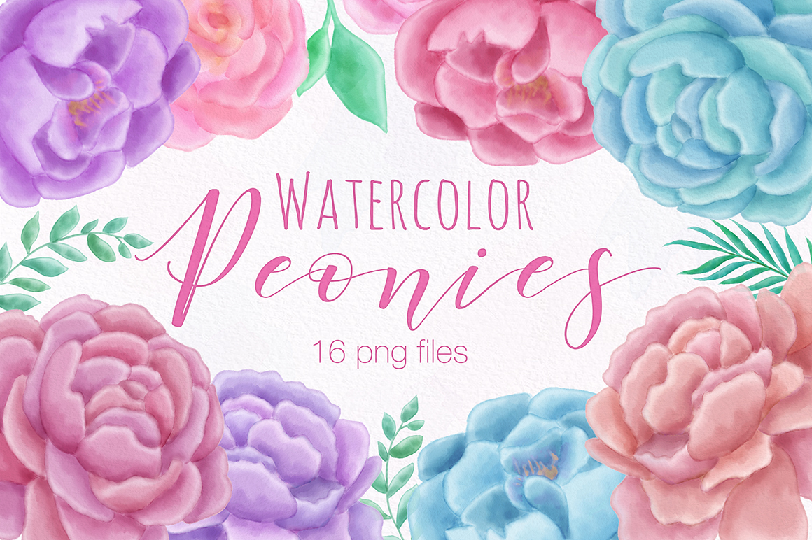 Peony Flower Watercolor Illustrations example image 1