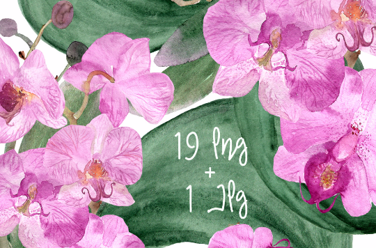 19 Watercolor Orchid Clip Art + Print example image 1