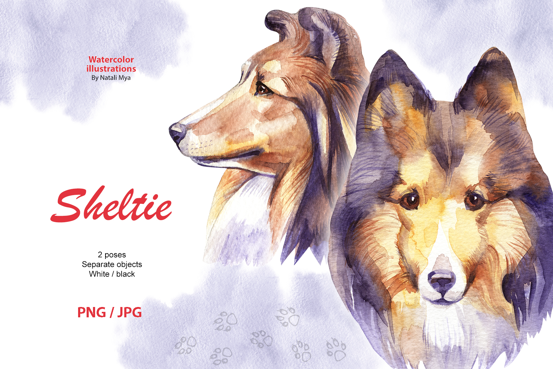 Watercolor dog - Sheltie example image 1