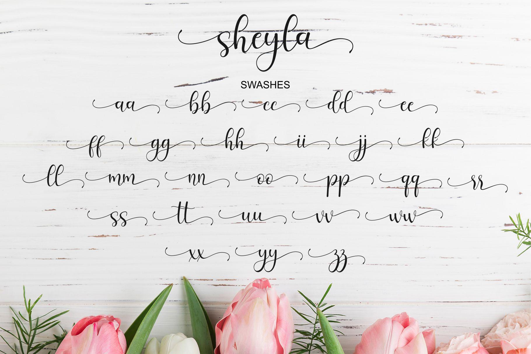 Sheyla Modern Script example image 9