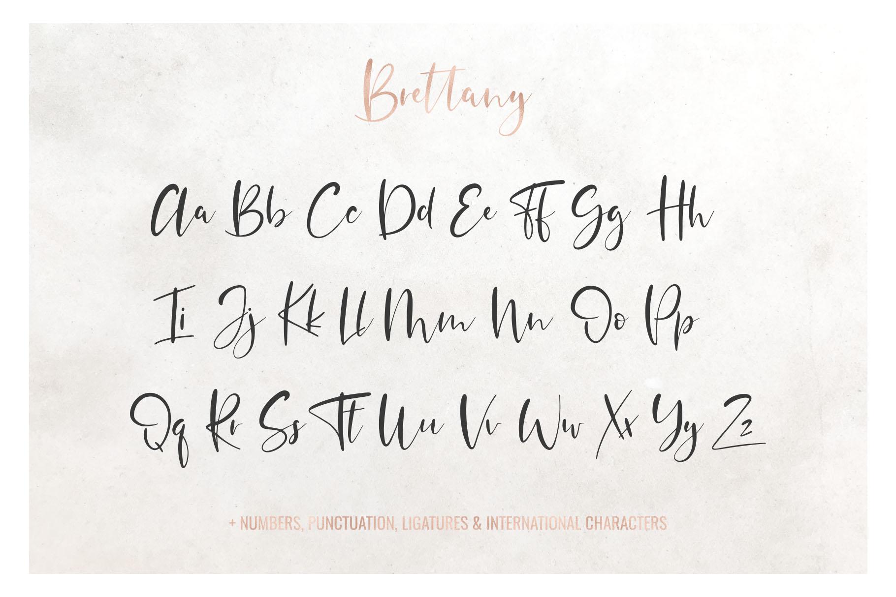 Brettany Script Font example image 3
