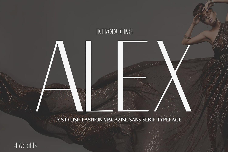Alex Sans Serif Typeface example image 1